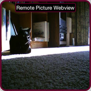 Remote Webview Picture Type Control